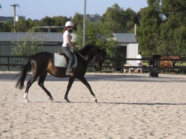 client horse
